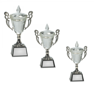 Crystal Trophy Cup on Black Base with silver handles