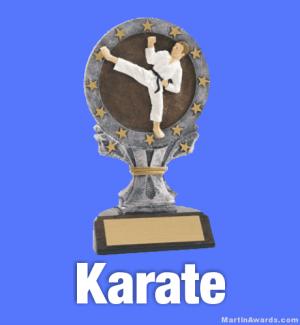 Karate Trophies