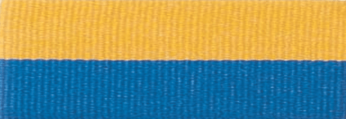 """7/8"""" Blue/Gold Neck Ribbon with Snap Clip"""