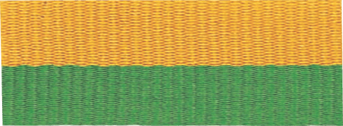 """1 1/2"""" Green/Gold Neck Ribbon with Snap Clip"""