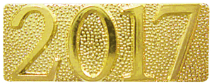 Gold 2017 Metal Chenille Letter Insignia
