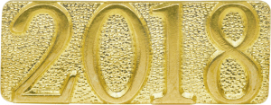 Gold 2018 Metal Chenille Letter Insignia
