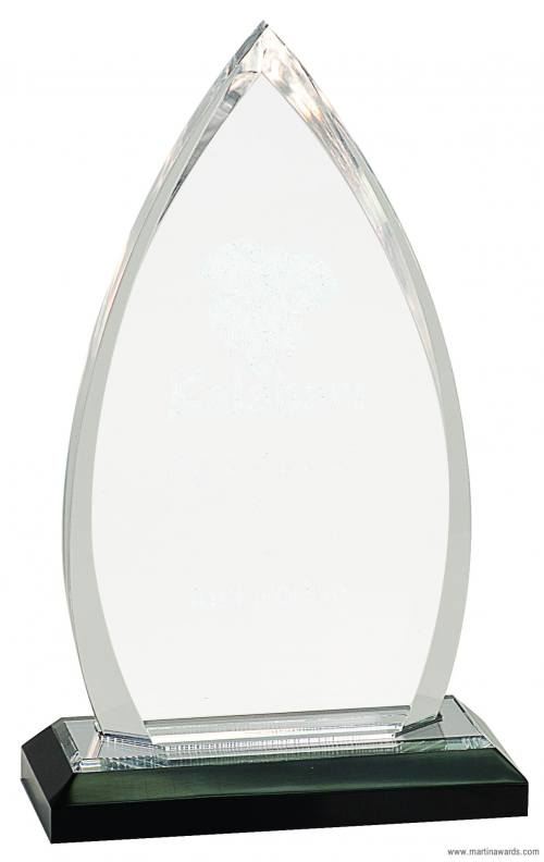 Oval Impress Acrylic Awards