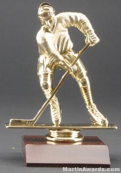 Male Hockey Trophy 1
