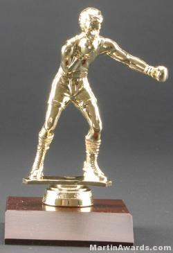 Male Boxer Trophy