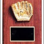 Trent Series – 6″ x 8″ Walnut Plaques with Sport Cast Relief 1