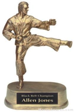 Male Karate Gold Resin Trophy