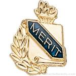 3/8″ Merit Award Pins 1
