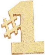"1"" No. 1 Chenille Letter Insert Pins"
