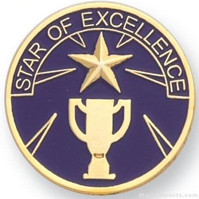 Star Of Excellence Lapel Pin