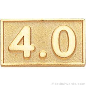 Rectangle Shaped 4.0 Average Pin